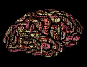 Depiction of related terms in shape of brain